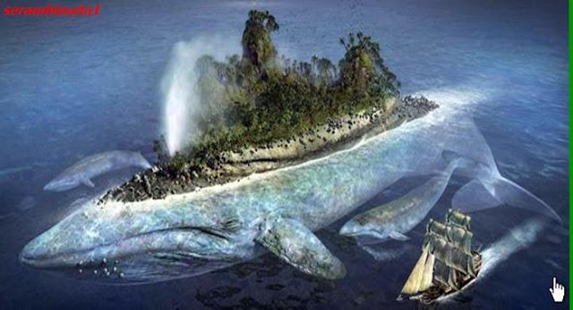Bahwa ikan yg ribuan tahun lalu menelan Nabi Yunus As itu ternyata masih hidup sampai sekarang... Baca Selengkapnya...