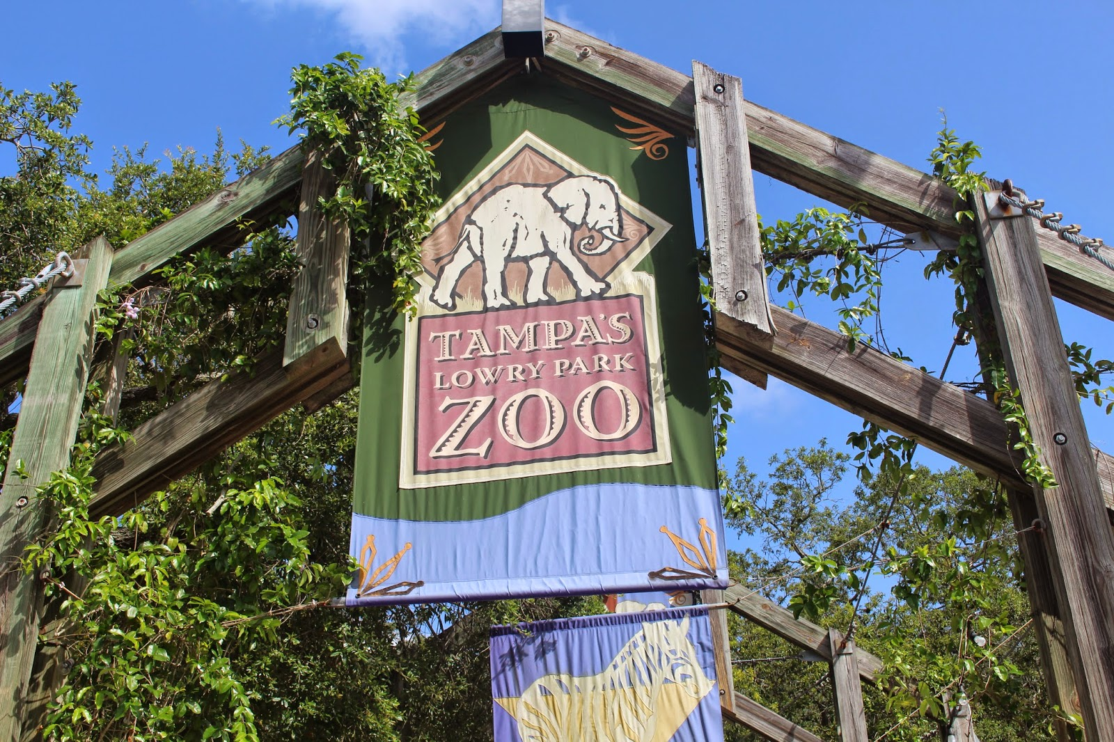Image result for tampa lowry park zoo