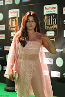 Nidhi Subbaiah Glamorous Pics in Transparent Peachy Gown at IIFA Utsavam Awards 2017  HD Exclusive Pics 63.JPG