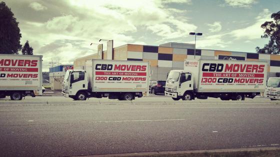 cbd movers