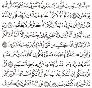 Tafsir Surat Al-An'am Ayat 36, 37, 38, 39, 40