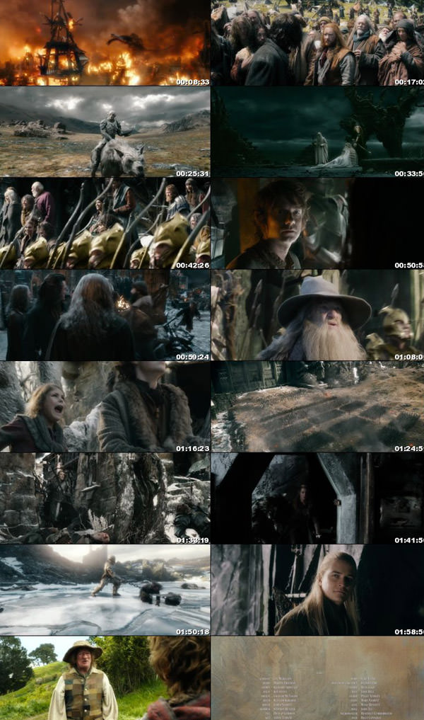 THE HOBBIT THE BATTLE OF THE FIVE ARMIES 2014 Dual Audio