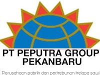 Lowongan Kerja PT. Peputra Group Pekanbaru