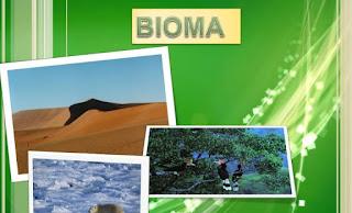 Macam-Macam Bioma Yang Populer Di Dunia