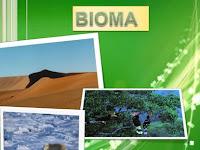 Macam Macam Bioma Yang Populer Di Dunia