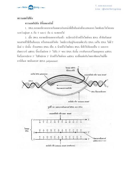 วิชาชีววิทยา เรื่องพันธุศาสตร์ ตอนที่ 2