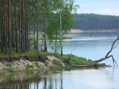 nordic walking, slow life, blog