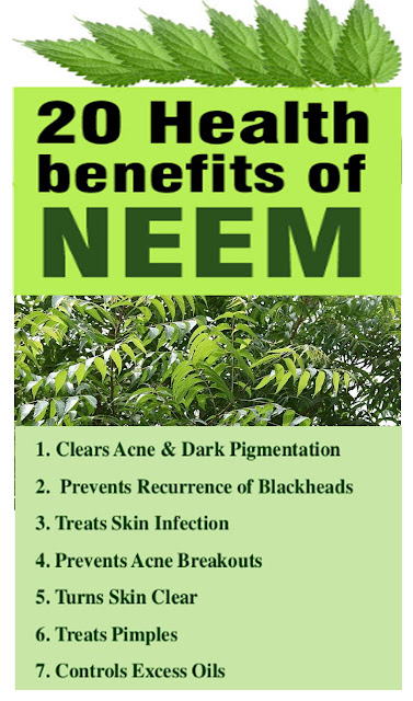 5 amazing healing benefits of Neem
