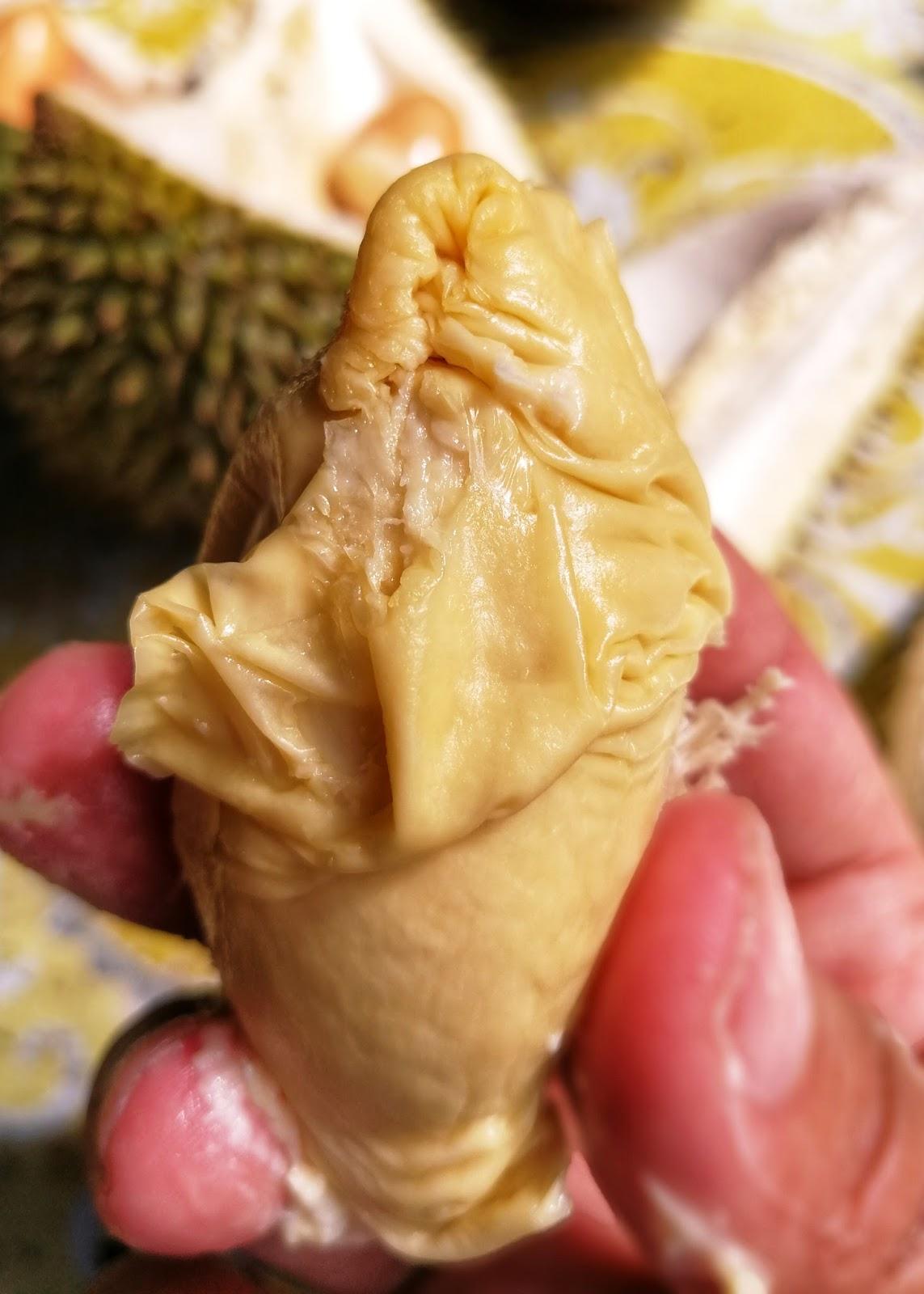 Durian empuk