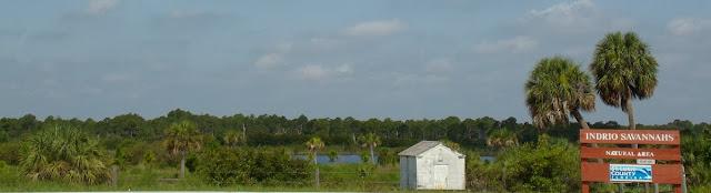 Indrio Savannahs Natural Area