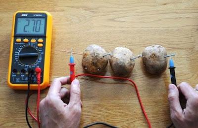 Οι πατάτες και οι χρήσεις τους
