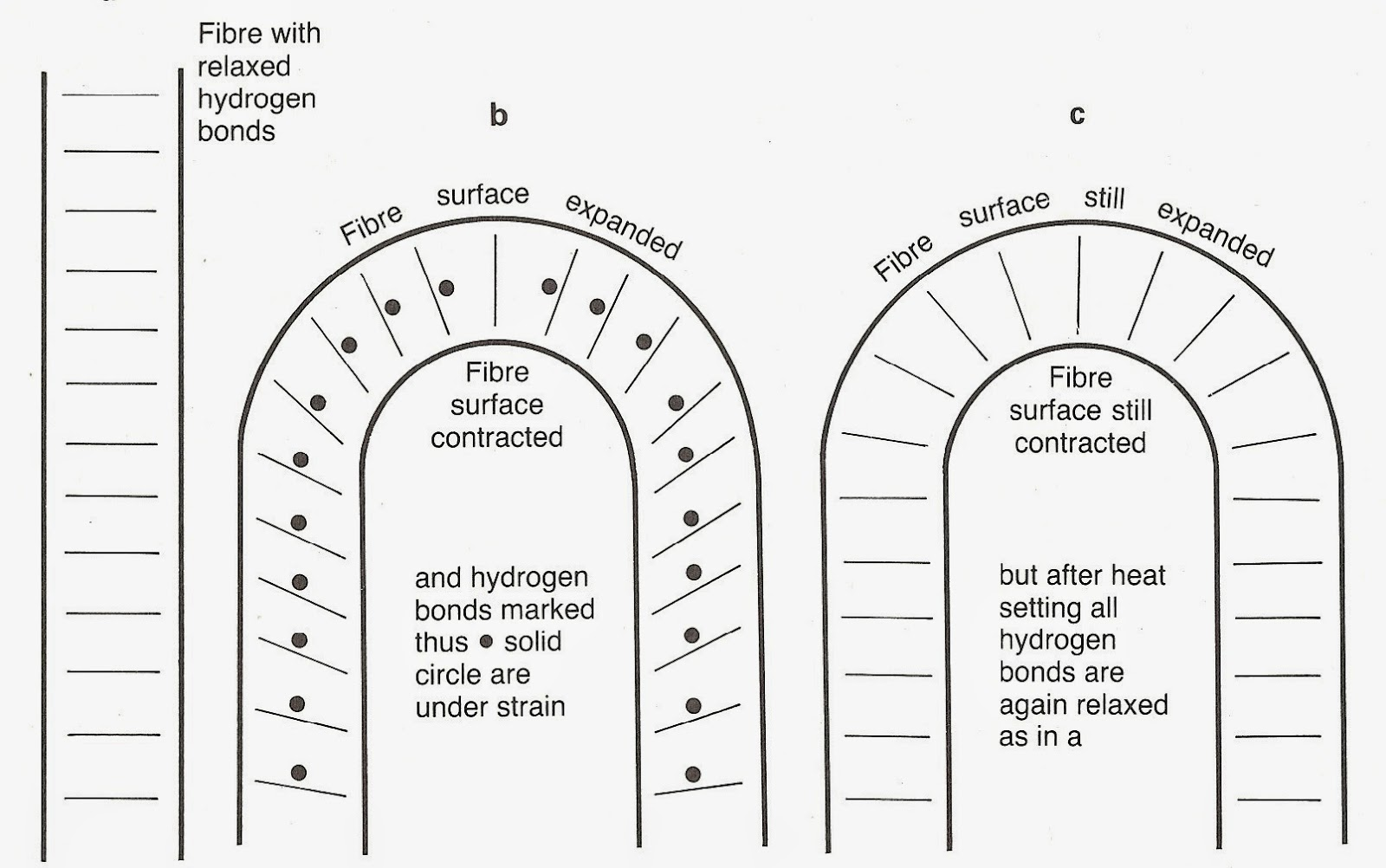 Heat Setting Nylon Fibers Are 54