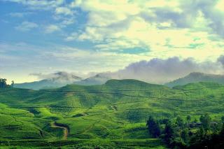 Keindahan yang terdapat di Puncak Bogor sudah jangan ditanyakan lagi. Puncak merupakan salah satu objek wisata di Bogor yang harus anda kunjungi ketika bepergian di wilayah wisata ke Puncak Jawa Barat. Puncak memiliki pemandangan alam yang indah sangat indah