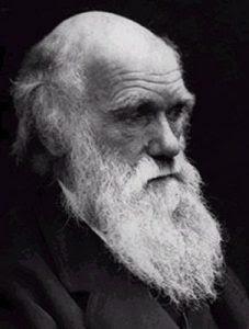 Học thuyết Darwin, Phật giáo và Thiên Chúa giáo - Nhiều Tác Giả