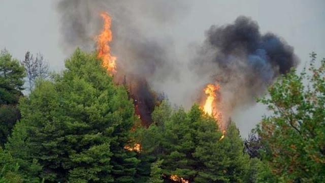 Μεγάλη πυρκαγιά με μέτωπο 20 χιλιομέτρων στην Κύπρο