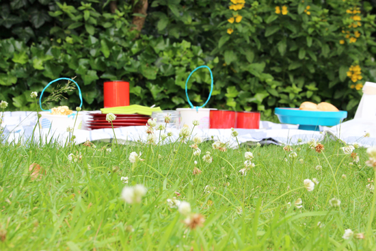 binedoro Blog, DIY, Sommerparty, Picknick