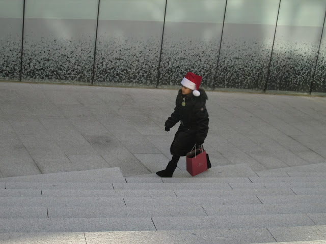 blog.oanasinga.com-winter-in-Europe-Leuven-Belgium-November-2012-(8)