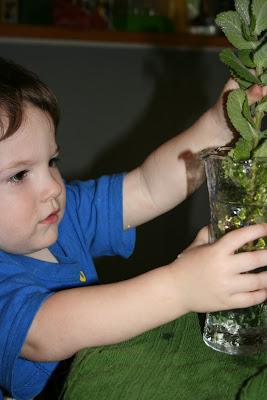 toddler Montessori flower arranging