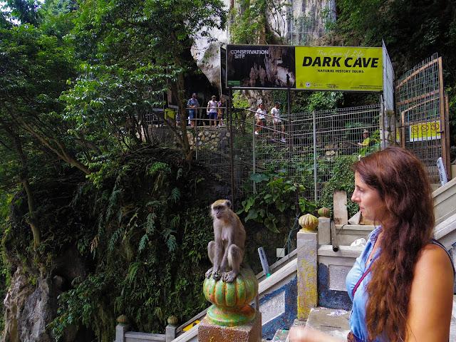 Batu Caves scimmie
