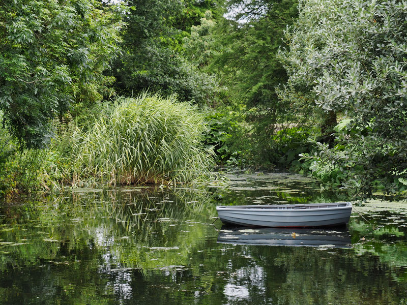 Photoeclectica a rowing boat as eye catcher for Garden pond builders essex
