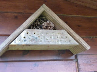 Hôtel à abeilles en bois avec pommes de pin