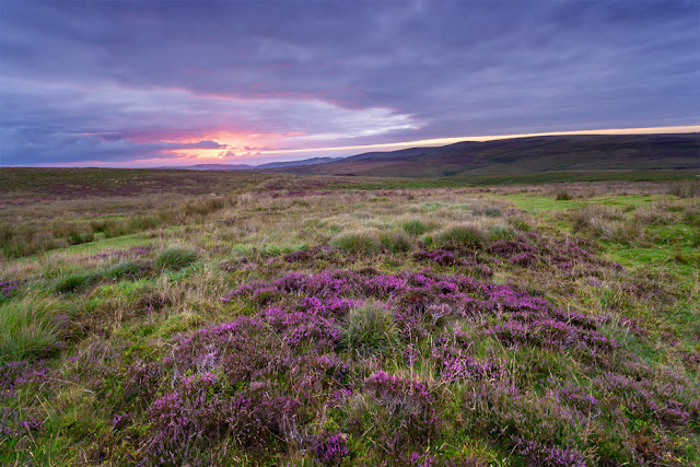 Sunrise light over the Exmoor landscape by Martyn Ferry Photography
