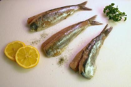 Manfaat Makan Ikan Dapat Mencegah Kanker