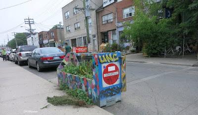 dumpster as garden