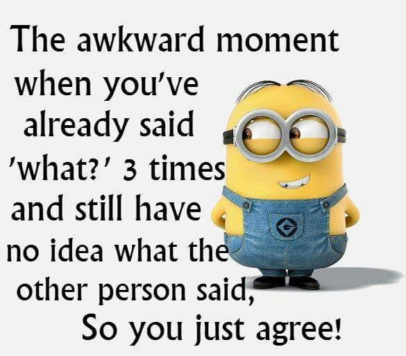 Funny Minions Quotes Of The Year