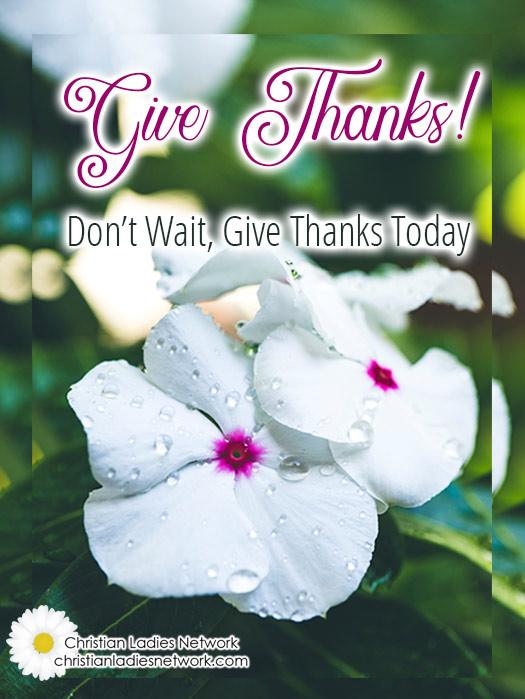 Give Thanks!  A Look at Psalm 103 Don't Wait, Give Thanks Today : christianladiesnetwork.com