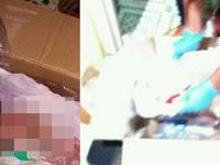 Kronologi Wanita Meninggal di Kamar Mandi usai Lahirkan Bayi di Kamar Mandi Kos Singosari Malang