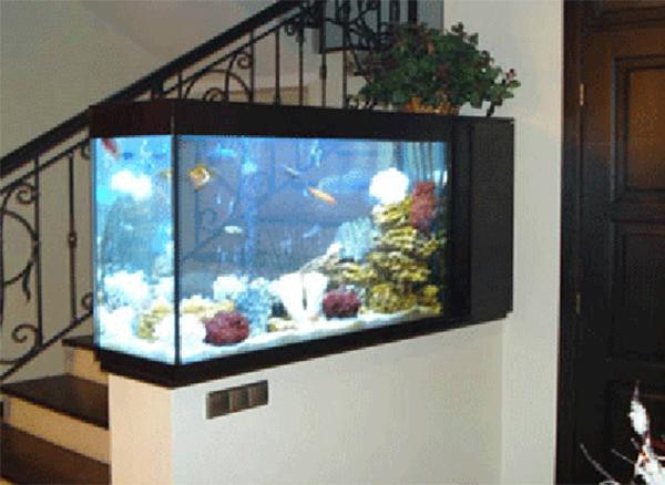 galleri aquarium untuk interior rumah anda istana aquarium. Black Bedroom Furniture Sets. Home Design Ideas
