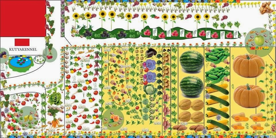 vetési naptár A MAGYAROK TUDÁSA: Kertészeti naptár   Zöldségeskert   Vetés  vetési naptár