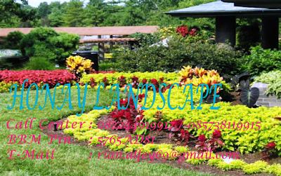 Honay Landscape Tukang Taman Mojokerto