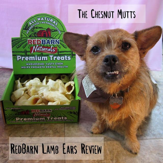 The Chesnut Mutts RedBarn Lamb Ears Review