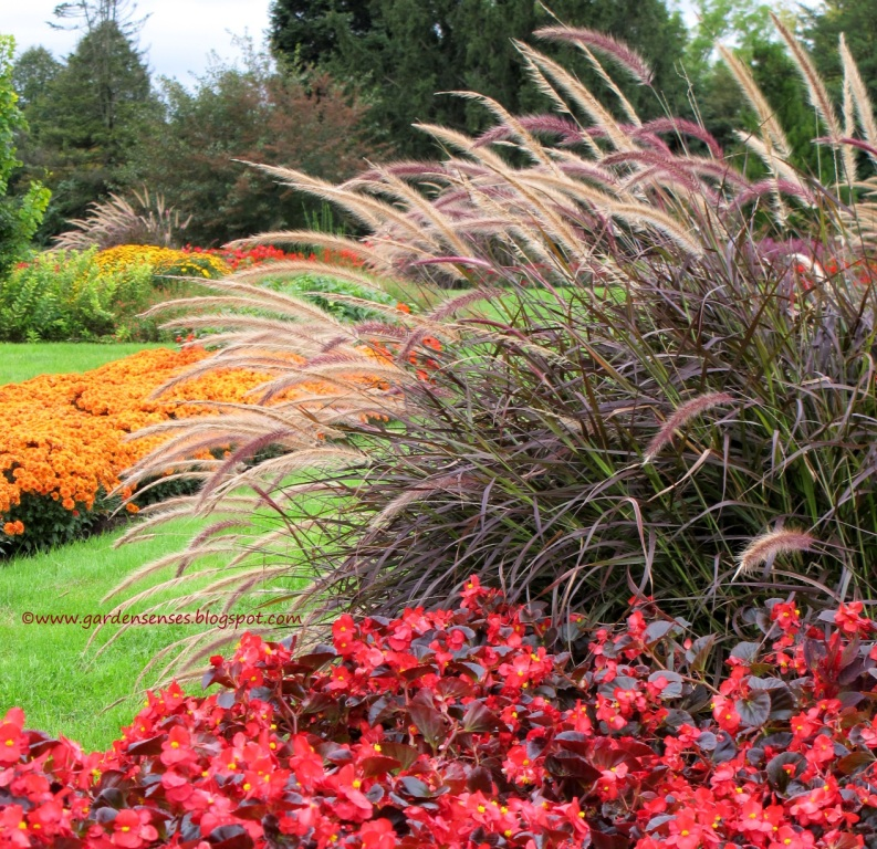 38 Glorious Japanese Garden Ideas: Garden Sense: Glorious Grasses At Hershey Gardens
