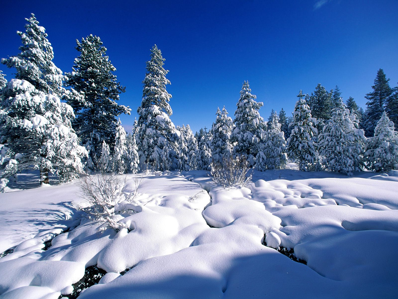 Mooie sneeuw achtergronden hd wallpapers - Afbeelding in ...