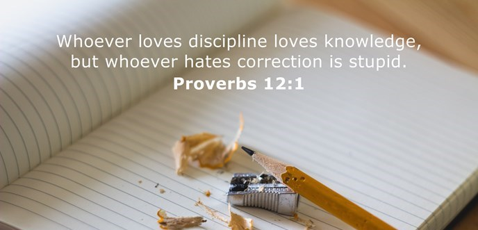 Whoever loves discipline loves knowledge, but whoever hates correction is stupid.