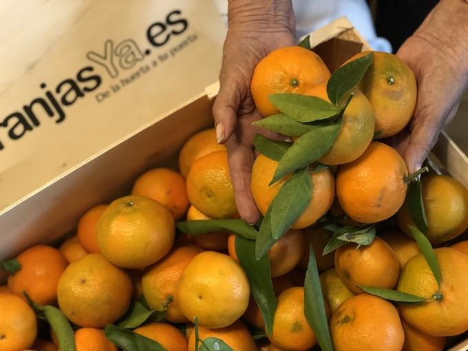 Flan de mandarina con almendra
