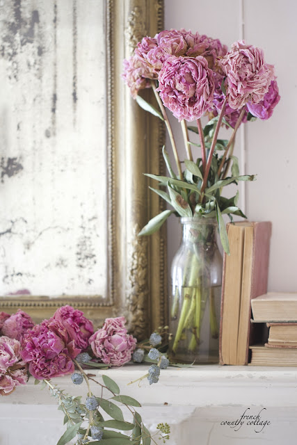 Dried peonies in vase of water