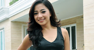 Karir Nikita Willy