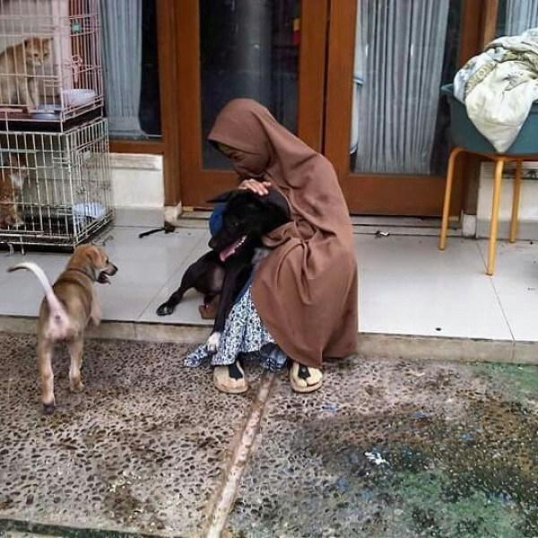Janga Karena Anggap Anjing Hewan Lucu, Ketahui Dua Gunung Pahala ini Bisa Hilang
