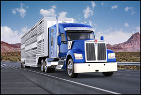 Kenworth W990 with 76-inch mid-roof sleeper