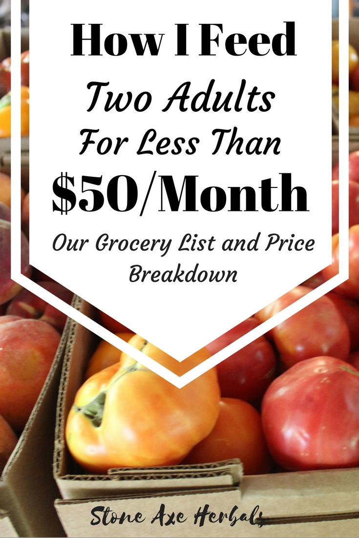 Our Grocery List: How I Feed Two Adults for Less Than $50/Month!