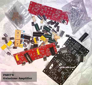 Assembling Gainclone Amplifier