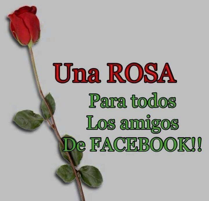 Imagenes Y Frases Facebook Frases Para Todos Los Amigos De