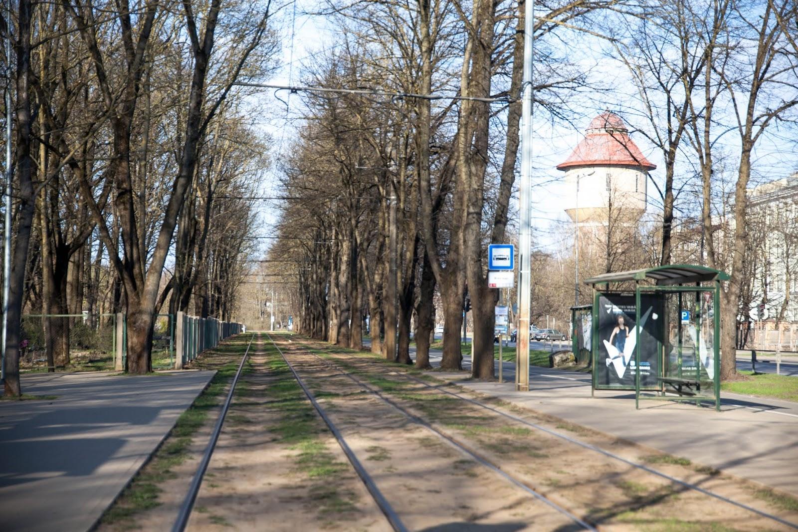 Riika hautausmaa Riga