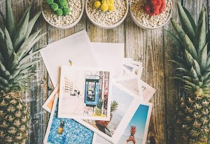 Photo Papers And Pineapple Fruit