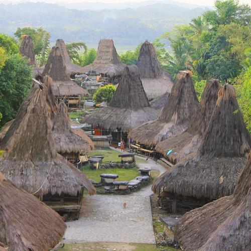 Tinuku Travel Prai Ijing village, the majesty indigenous peoples in Waikabubak and 48 traditional houses glorify Marapu land