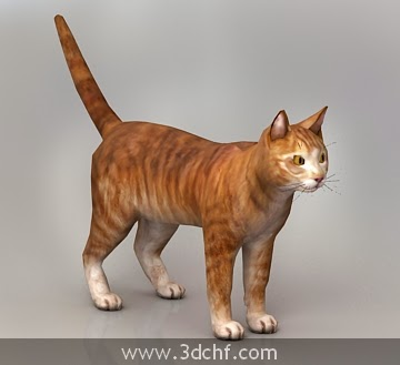cat 3d model free